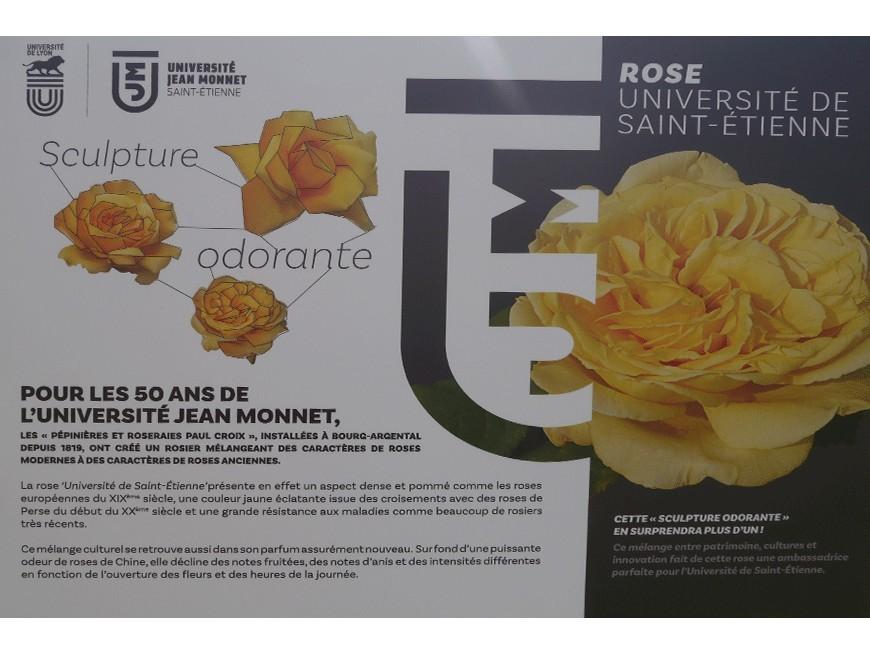Baptême de la rose Université de St-Étienne