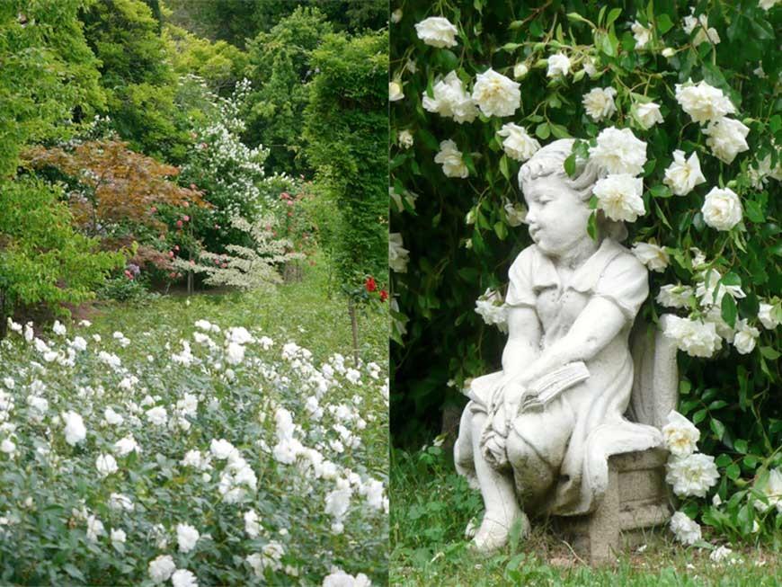 jardin-blanc-01