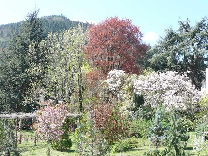 jardin-blanc-12