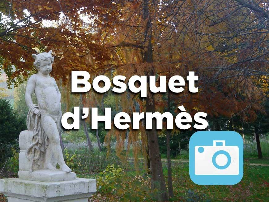 bosquet-hermes