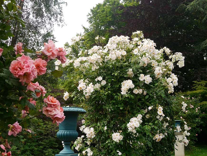 grande-roseraie-26
